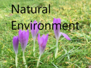 link to nature page